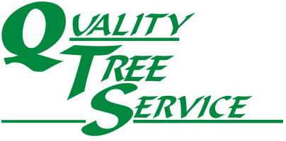 Quality Tree Service | Rhinelander & Bayfield, Wisconsin
